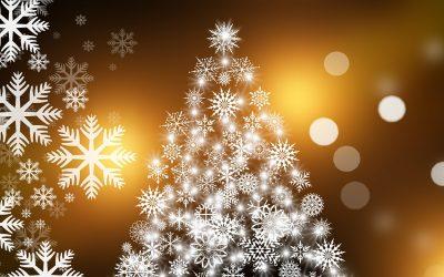 Organiser un repas de Noel en famille.